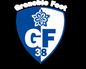 logo entreprise GF38
